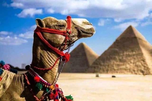 Когда откроют Египет для россиян в 2019 году: последние новости